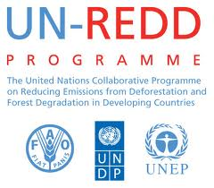 United Nations Collaborative Programme on Reducing Emissions from Deforestation and Forest Degradation